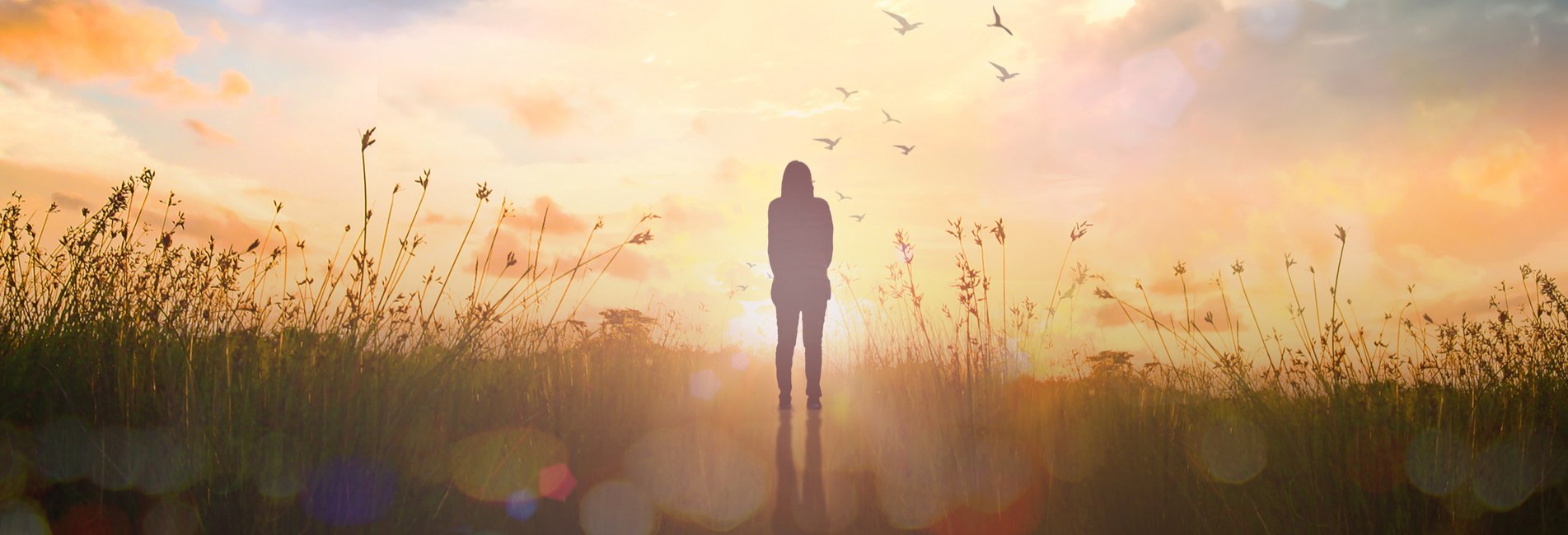 A Safe Haven With Harm Reduction Care Resurgence – A woman stands in a field with tall grass looking into the sunset as she reflects on her recent experience at a safe, inpatient drug rehab without drugs and her newly-founded sobriety.