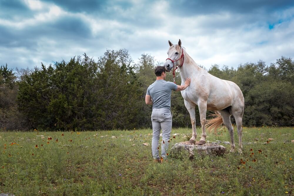 Resurgence Texas horseback riding